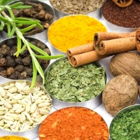 Build your Immune System, code Staywell