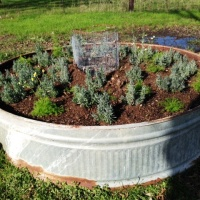 Do you know your matters? Brown and Green?