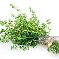 Thyme to Boost your Immune System